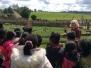 Butser Farm Visit